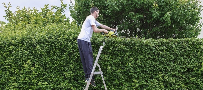 manutenção de áreas verdes - via serviços terceirizados